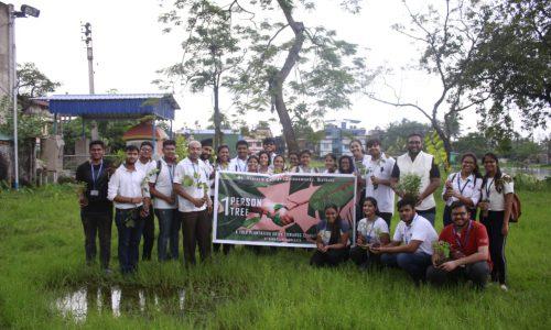 Tree Plantation 1