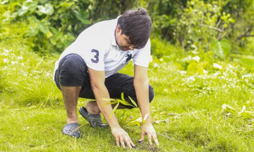 Tree Plantation 5.JPG.crdownload