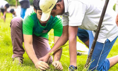Tree Plantation 6.JPG.crdownload.JPG.crdownload